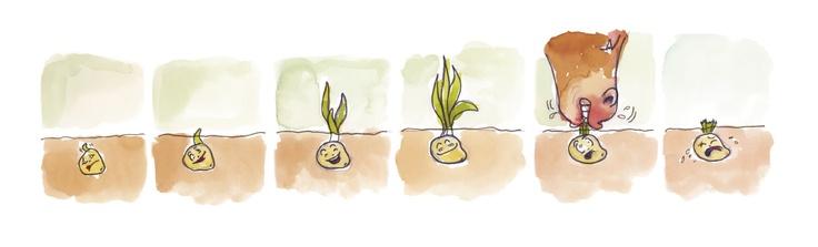 #Ilustración de Magdalena Amstrong para #libro Ecología y Medio Ambiente.    #ocholibros #eco #book #ecologia #illustration
