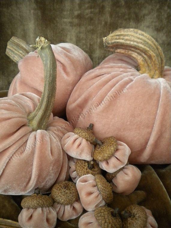 Best 25 velvet acorn ideas on pinterest for Pumpkin stems for crafts