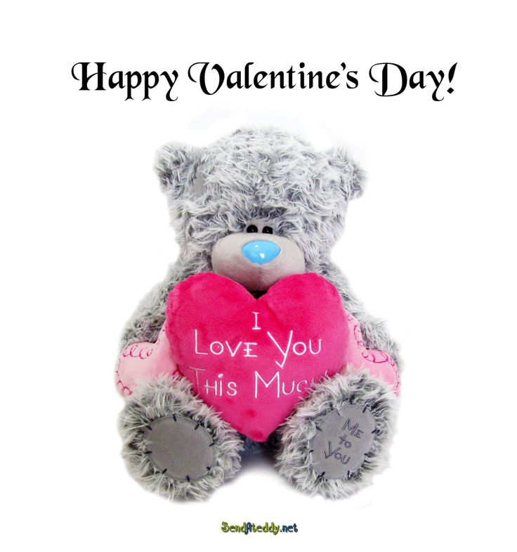 Send A Teddy: Happy Valentine's Day