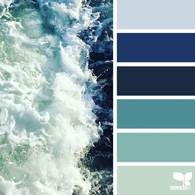 today's inspiration image for { color tide } is by @moimoibakery ... thank you, Elly, for another wonderful #SeedsColor image share!