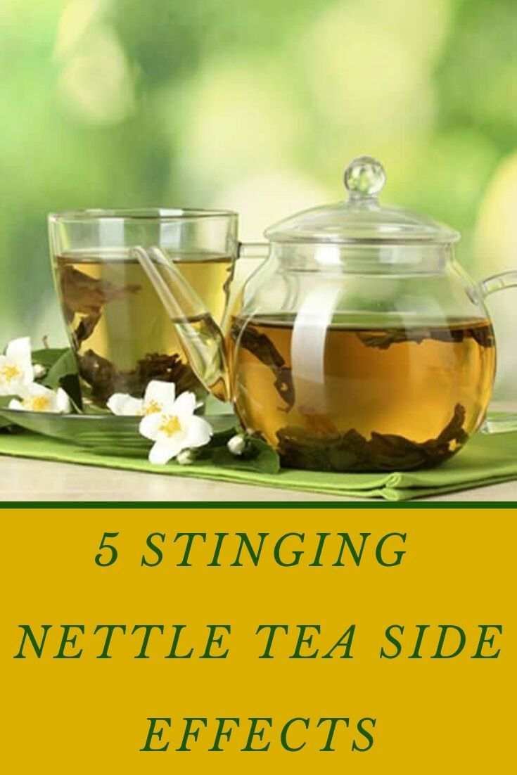 5 Stinging Nettle Tea Side Effects Things You Should Know In 2020