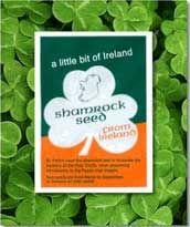 Irish Weddings, Irish Traditional Weddings, culture and Irish customs - World Cultures European