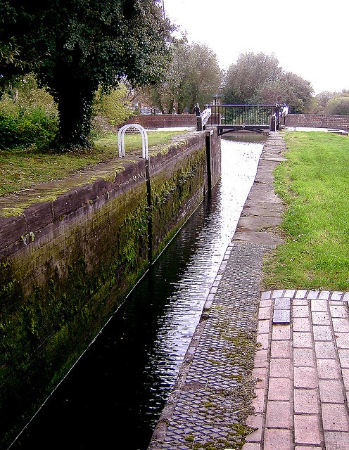 It can seem a long way down and a long way through when you are in a narrowboat, with those sheer walls on either side.  I lost track of the official lock numbers, but this one was on the stretch of the Stourbridge Canal between the Samson and Lion Pu http://viettelidc.com.vn