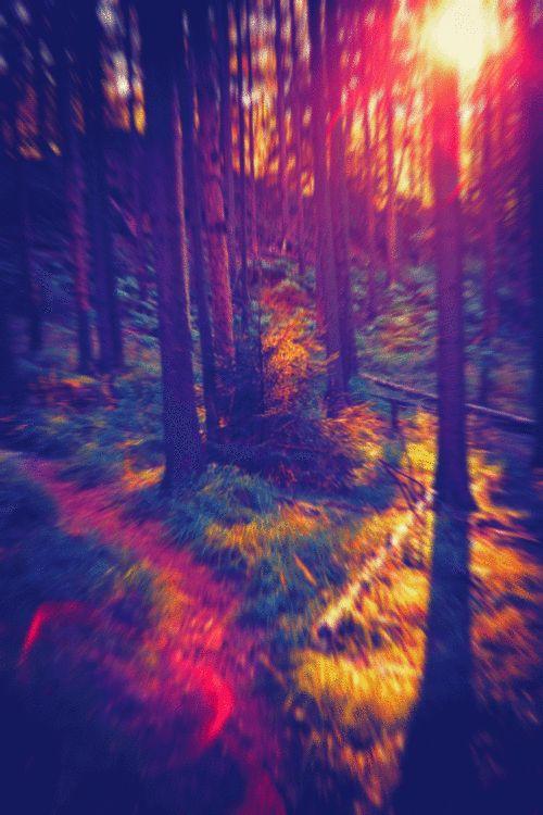imagenes hipster tumblr paisajes - Buscar con Google