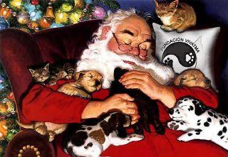 Eres un Papá Noel moderno, estas metido e las redes sociales y tienes a muchos ángeles disfrazados de humanos que te ayudan y nos tienen en cuenta. Tenemos una lista de deseos para esta navidad y el año que sigue, y te agradecemos, si la echas un ojito.