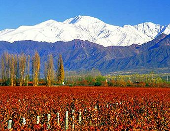 Mendoza, Argentina...vineyards, mountains, cute villages--we are hoping we spend our birthdays in this best-of-all-worlds place : )