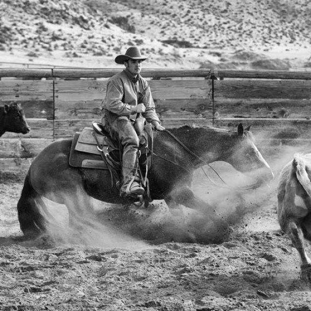 Cutting!western quarter paint horse appaloosa equine tack cowboy cowgirl rodeo ranch show ponypleasure barrel racing pole bending saddle bronc gymkhana