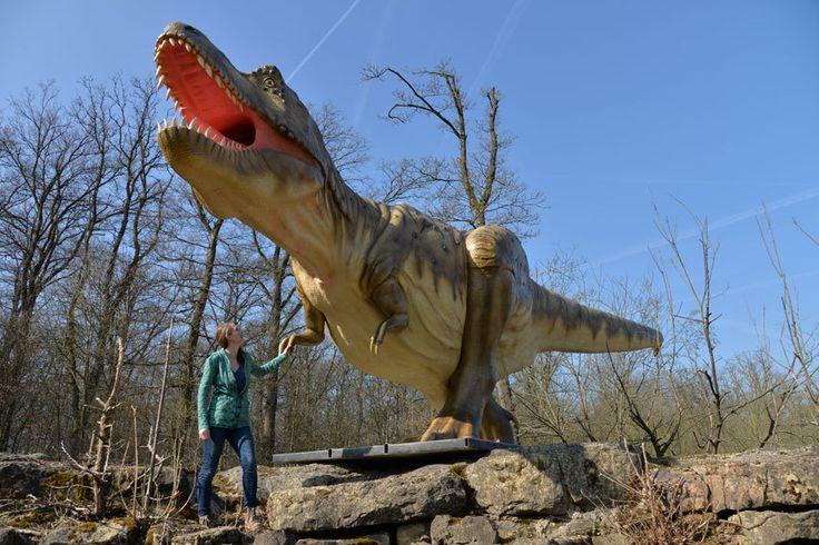 Knapp über 2 Stunden - bei Bitburg  Zurück in die Urzeit: Neuer Dinopark in der Eifel - TRAVELBOOK.de