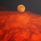 Full Moon July 3rd is the The Full Buck Moon ~ this month is when new antlers of buck deer push out of their foreheads in coatings of velvety fur.    It was also often called the Full Thunder Moon, for the reason that thunderstorms are most frequent during this time. Another name for this month's Moon was the Full Hay Moon. ~~~