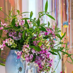 Royal Smushi Cafe - flowers - summer