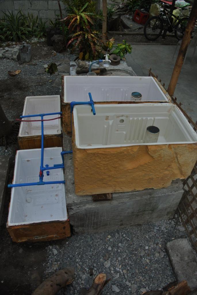 615 best images about gardening aquaponics on pinterest for Aquaponics pond