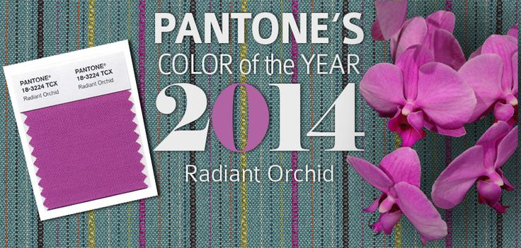 Pantone's Color of the Year 2014: Radiant Orchid