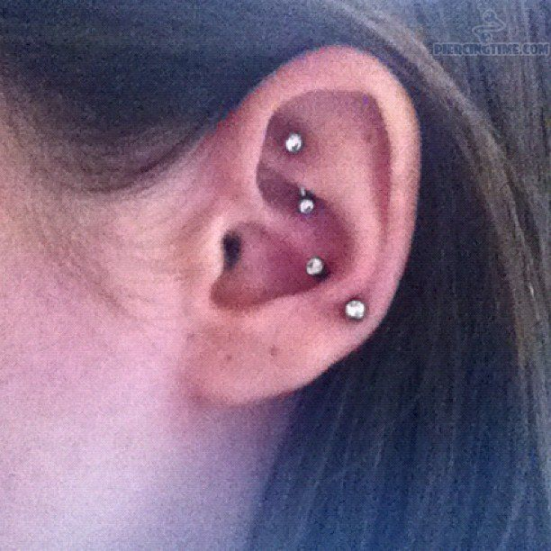 Anti Tragus Piercing | Rook , Anti-Tragus Piercing | rook ... Ear Piercings Anti Tragus