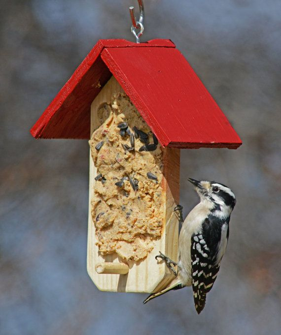 365 best images about bird feeders houses food on for Types of birdhouses for birds