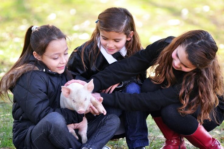 Nenas con una simpática mascota  www.viajaportupais.gov.ar