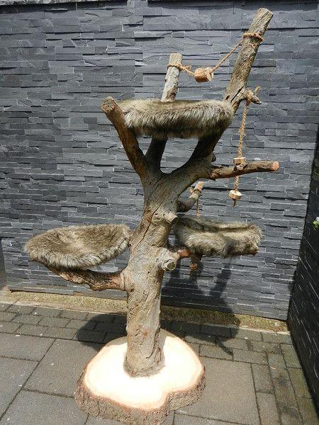 Katze: Kratzartikel - Naturnaher Kratzbaum, Kletterbaum, Spielbaum - ein…