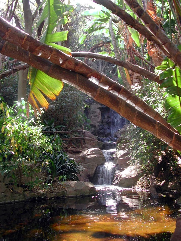 Pretoria National Botanical Gardenhttp://www.gauteng.net/attractions/entry/pretoria_national_botanical_garden/