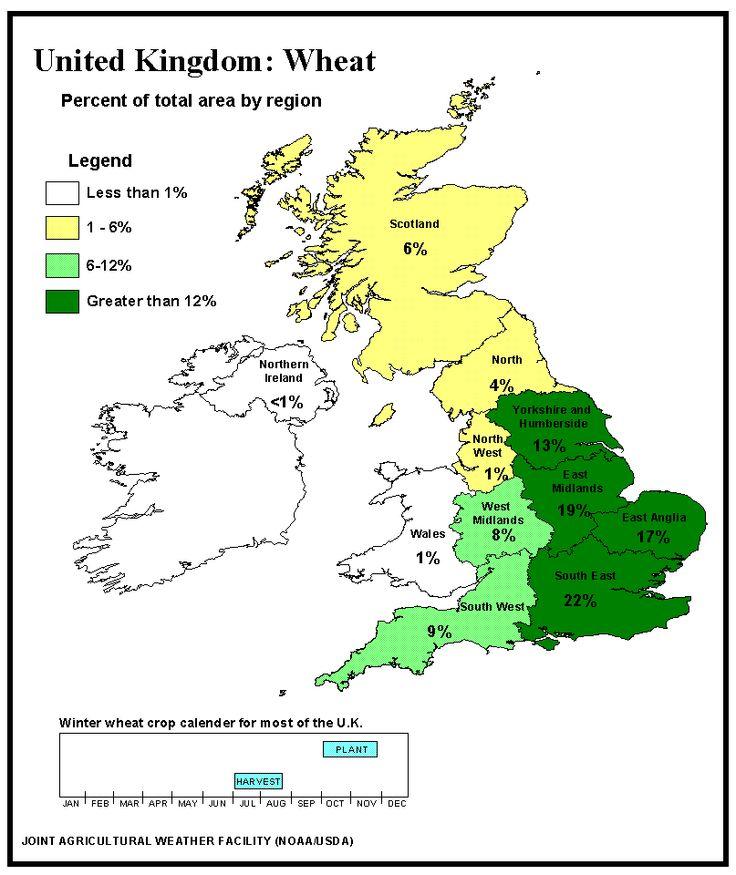 Frumento, UK: le scorte rimangono elevate - Materie Prime - Commoditiestrading
