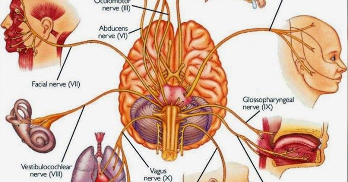 here is a natural remedy - practice yoga, breath, meditate :-) #yoga #health #vagus #nerve