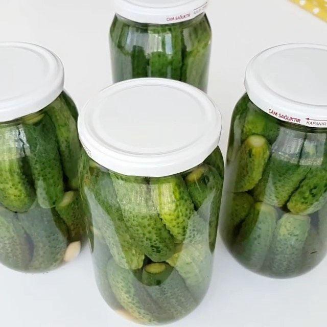 Hanaa Cook On Instagram مخلل الخيار Zubeydemutfakta Zubeydemutfakta Zubeydemutfakta لكل قنينه نصف كيلو من الخيار الصغير Cucumber Pickles Recipes
