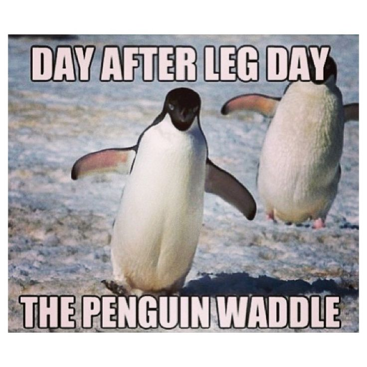 #OnTrack Humor - When you have the post-exercise waddle on leg day, you know you did it right!