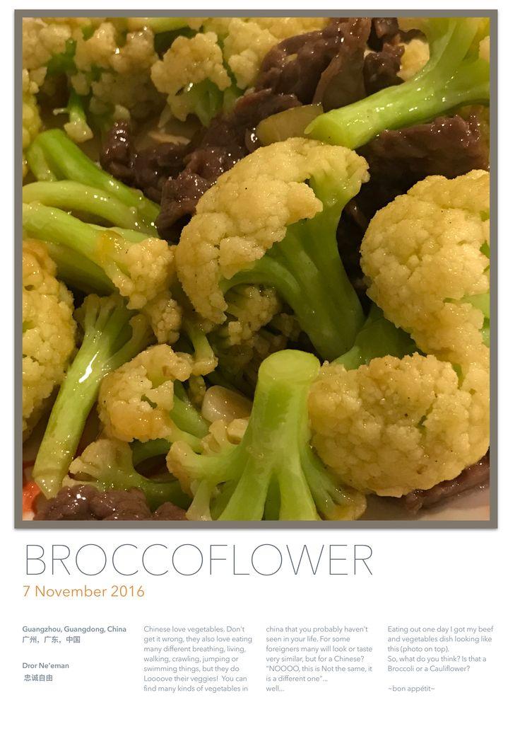 Broccoli Or Cauliflower?!