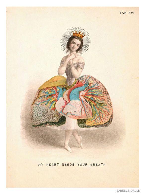 My Heart Needs Your Breath - Planche XVI de la série Anatomy. - by Isabelle Dalle