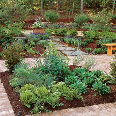 Herb gardens with brick paths looks so nice. Many culinary herbs are perennials such as thyme or lavender, while others are biennials such as parsley or annuals like basil. Some perennial herbs are shrubs (such as rosemary, Rosmarinus officinalis), or trees (such as bay laurel, Laurus nobilis) – this contrasts with botanical herbs, which by definition cannot be woody plants. Some plants are used as both an herb and a spice, such as dill weed and dill seed or coriander leaves and seeds. Also…