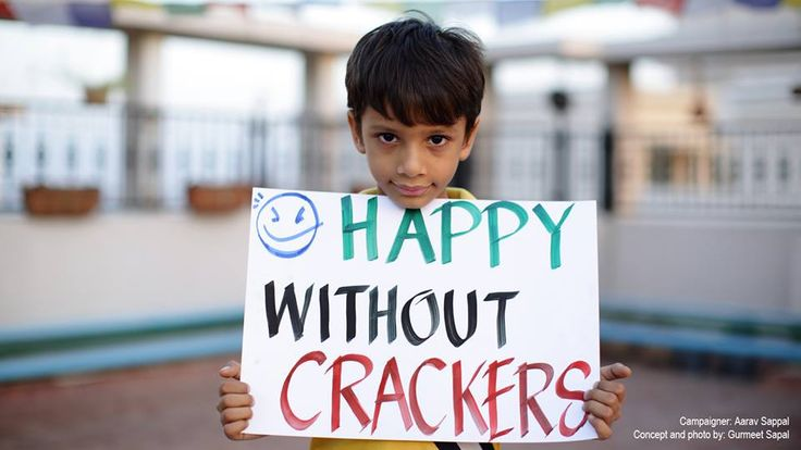 Diwali 2014 - Let's Go Green. 17 Reasons You Should Say No To Crackers