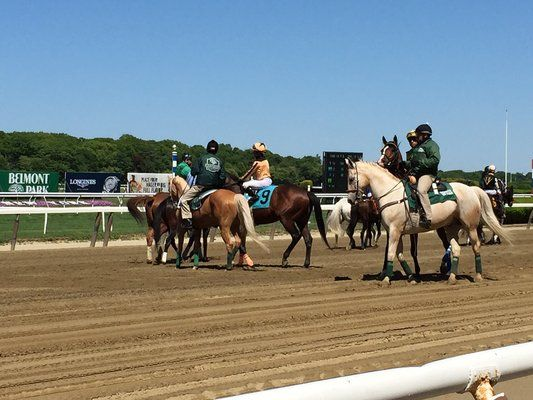 Horses warming up at track level. | Yelp