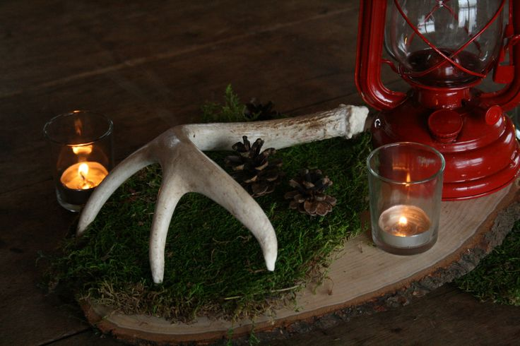 Into the Woods (Back Side). Cedar base. Deer antler. Red camping lantern. Moss. Pinecones. Candles in votive holders. Is there anyway you can incorporate greenery of some sort into this, or do you have another idea? www.facebook.com/...