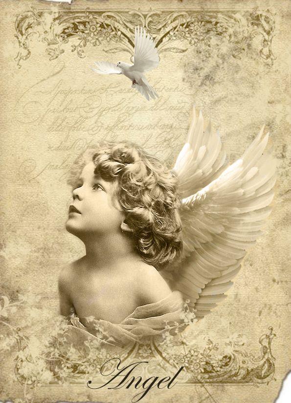 419 mejores im genes de angeles en color y b n im genes y - Composiciones de fotos ...
