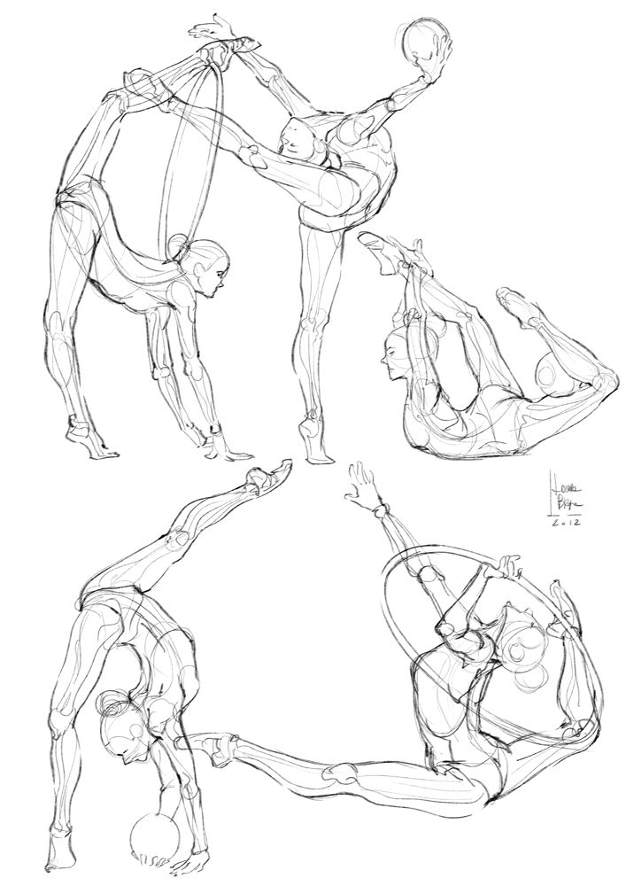 Some anatomical studies - gymnastics- by Laura Braga -