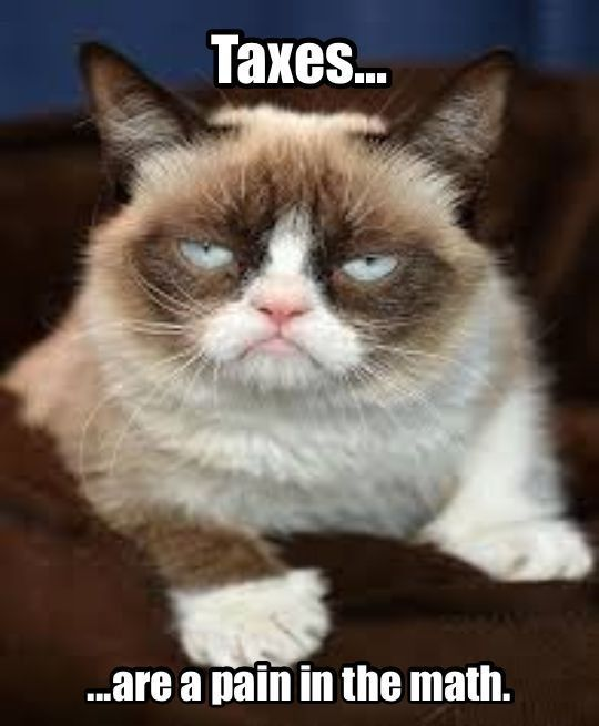e039cb69e19c2fcefb3246f482c1bd4c grumpy cat meme grumpy kitty 625 best grumpy cat images on pinterest grumpy cat, grumpy kitty