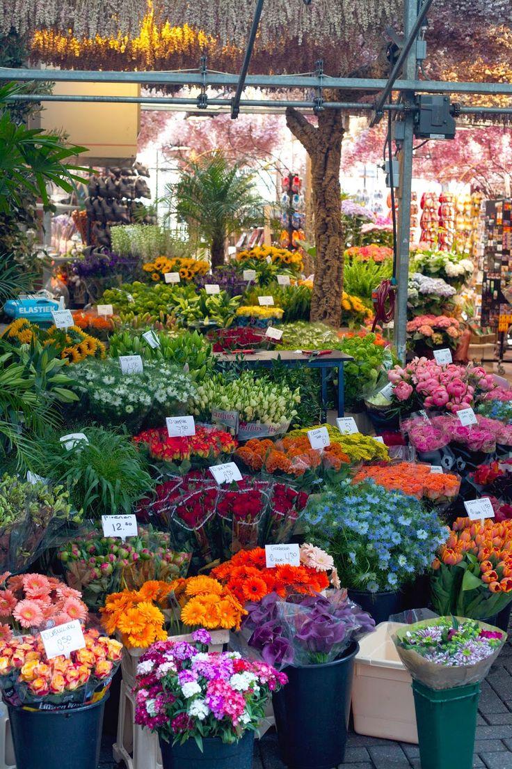 Floating Flower Market, Amsterdam, Netherlands