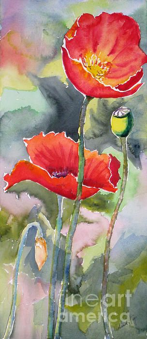 Poppies 3 by Mohamed Hirji - Poppies 3 Painting - Poppies 3 Fine Art Prints and Posters for Sale