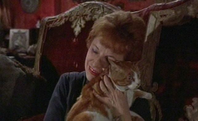 The Contessa Magda Terribili-Gonzales (Lotte Lenya) owns at least two cats in The Roman Spring of Mrs. Stone (1956).