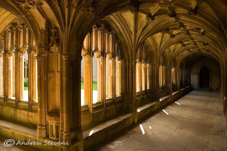The Cloisters, Lacock Abbey (asp08-6277)