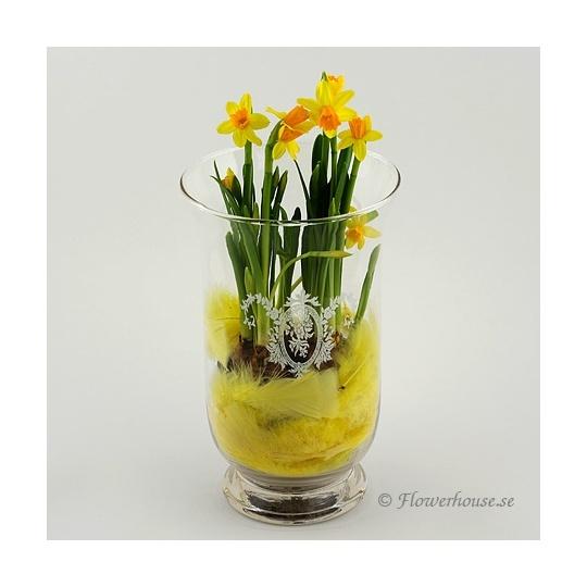 Påskblomma i vas.  Underbar påsk kreation från oss på Flowerhouse.    http://www.flowerhouse.se/sv/product/617/Paskblomma-i-vas