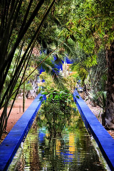 Majorelle Gardens, Marrakesh: I've always loved this water feature and plan to recreate it on my property.