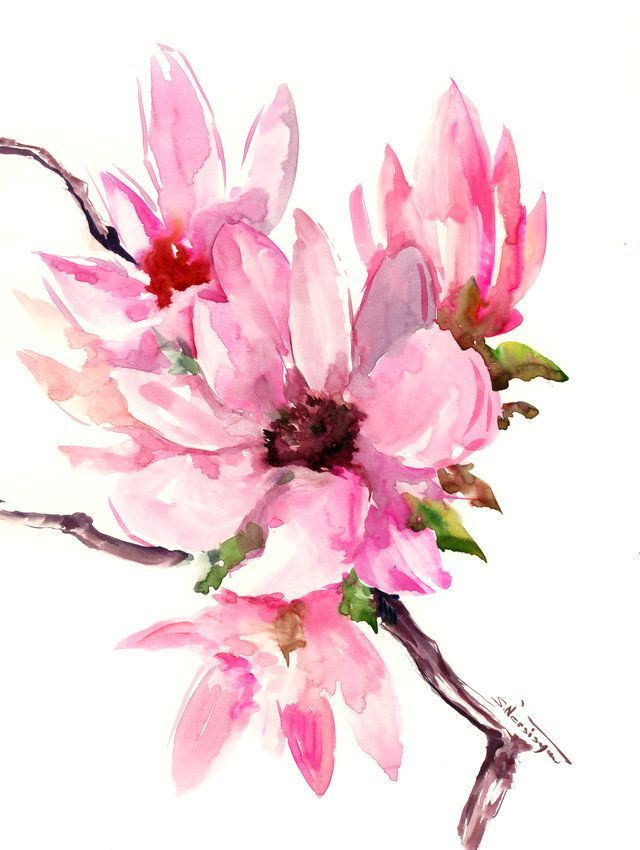 Magnolia Abstract Pink White Floral Painting Original Watercolor Painting White Pink Magnolia F Floral Painting Flower Painting Original Watercolor Painting
