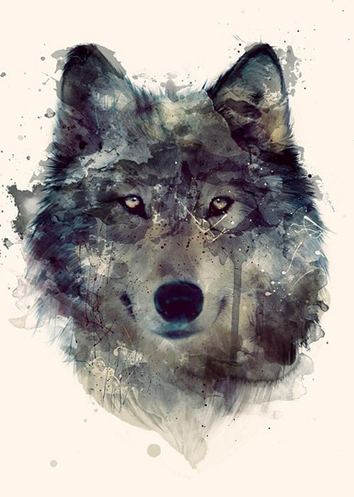 22 best images about Cool&Cute Wolfs on Pinterest