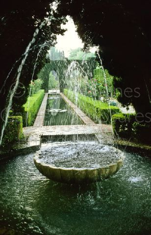 Reflecting Pool with Fountain and Boxwood Hedges.