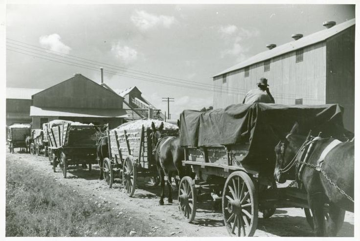 """Part of cotton gin with wagonloads of cotton waiting in background at Delta and Pineland Company, Scott, Mississippi Delta, Mississippi, October 1939."""