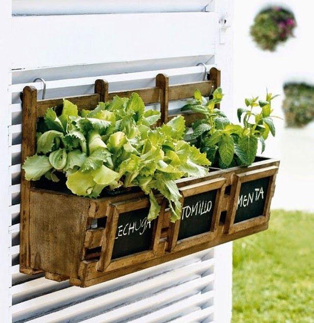 Tendencias de decoración con plantas