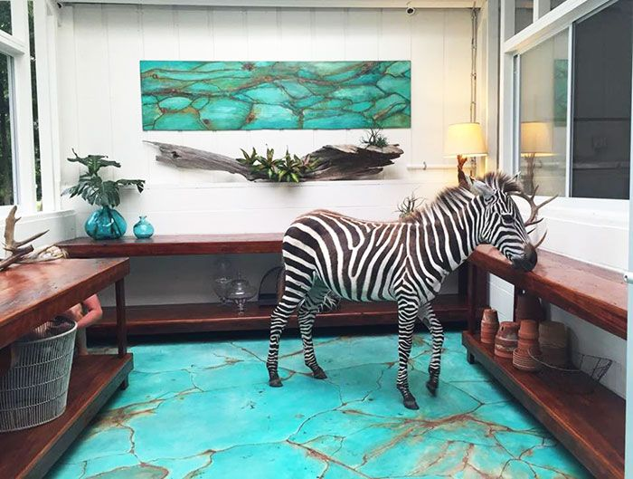 Zsa Zsa Gibson the Zebra enjoying the Metal Effects Patina Floor in Jennifer Gibson's new studio | Project feature on the Modern Masters Blog