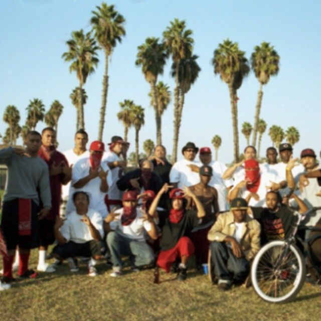 The Carson WestSide Pirus are primarily a Samoan-American street gang located on the West Side of Carson, California. Their neighborhood is around Figueroa Street, between 220th Street and Carson Street. They originated from the West Side Pirus located in the city of Compton.  The Carson West Side Pirus originated in the early 1980's, and were one of the first gangs in Carson, to represent Piru outside of Compton, CA. The Carson West Side Piru received media attention after being linked to…