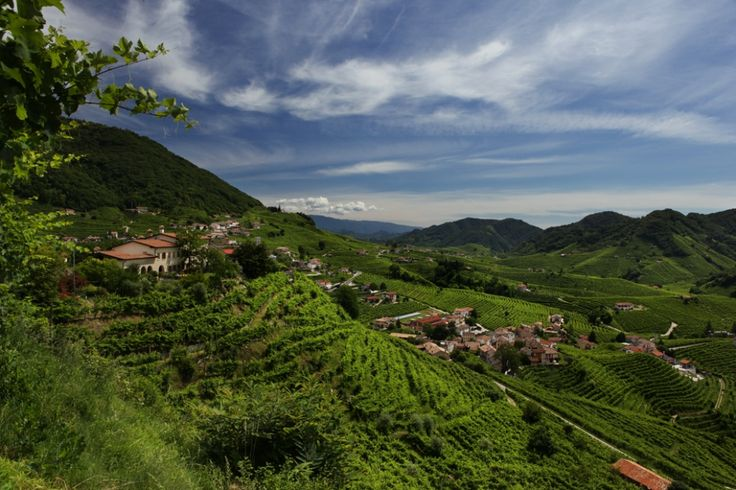 Panoramica dalla collina del Cartizze a Santo Stefano di Valdobbiadene, foto di Francesco Galifi | La strada del prosecco: itinerario enogastronomico in Veneto su Trivago
