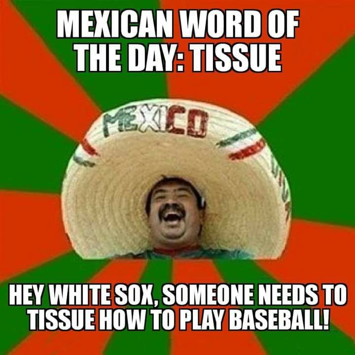 e03d6f65ffd4a090962e71d88038a66c 35 best chicago white sox memes images on pinterest chicago