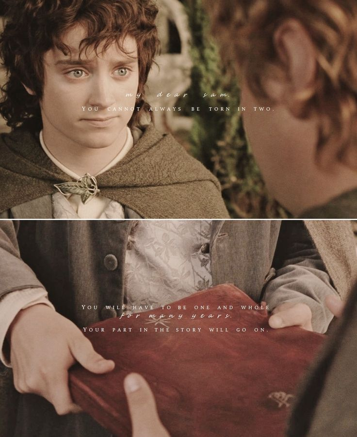 Frodo + Sam: The last pages are for you, Sam. Just a reminder that Sam was a ringbearer too. Though just for a little while.